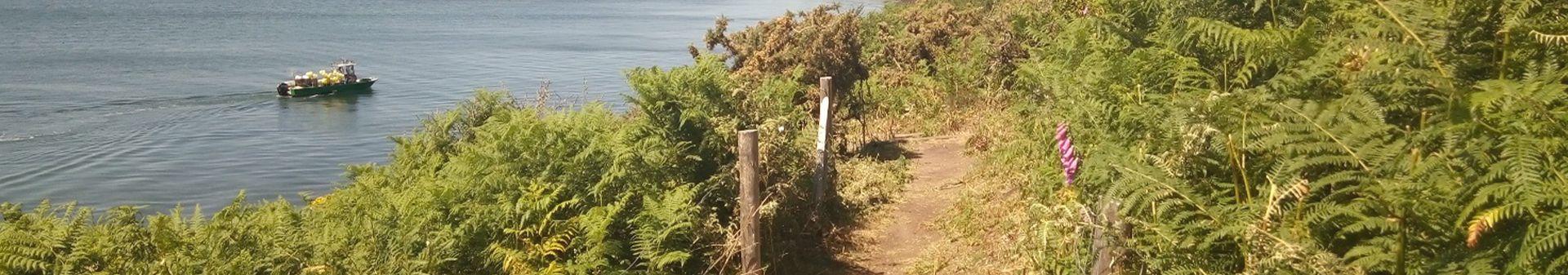 sentier côtier île-aux-moines